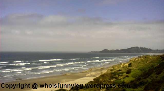 oregon coast pic